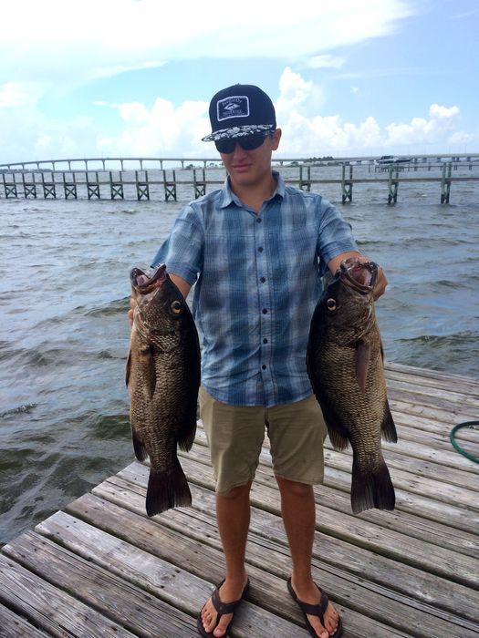Inshore fishing remains strong give us a call to discuss for Fishing charters stuart fl
