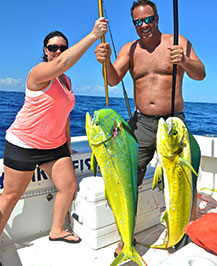 Two dolphin (mahi mahi) caught on board the DayMaker charter boat.