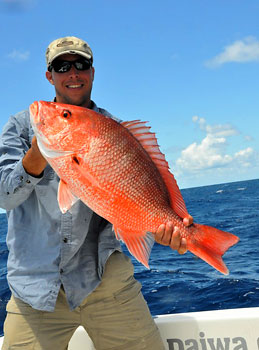 Red snapper caught by bottom fishing.