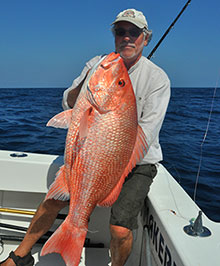 A true red snapper caught off Flordia's east coast.